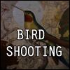 Ucmekaj ptice