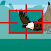 Lov na ptice