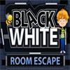 Crno-bela kuća