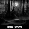 Kuća u mračnoj šumi