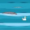 Spasi patku