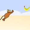 Majmun vozi skejt