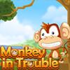 Majmunče u problemu