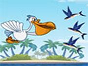 Nahrani pelikana