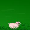 Spasi svinje