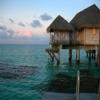 Tahiti Slagalica